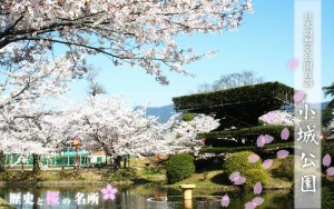 <6/6開催>佐賀県小城のちょい飲み