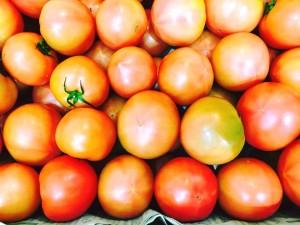 ゆすかわトマト