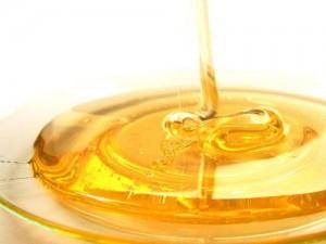 <9/15開催>いちばの昼勉~新蜜の時期到来! 採れたて新蜜を味わいながらはちみつを学ぼう!~