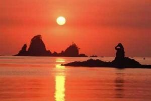 海の幸満載!静岡県西伊豆町のちょい飲み&地域魅力発見料理教室