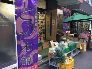 【月間ご当地まつり】茨城県取手市まつり開催中!