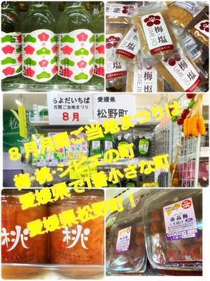 【月間ご当地まつり】愛媛県松野町まつり開催中!