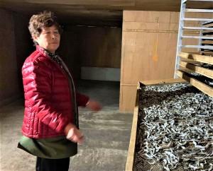 【一山水産】海沿いの製造はいつも撮れたての魚を加工するため。殆どを手作業で丁寧に行い、平戸の食文化を守り続けています。写真は一山水産 一山ハマ子さん。