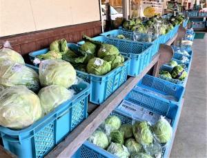 店頭には毎日旬の新鮮野菜が平戸市内の生産者さんたちから持ち込まれます。