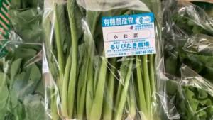 0518小松菜