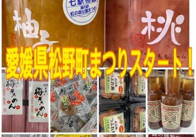 【月間ご当地まつり】愛媛県県松野町まつり開催中!