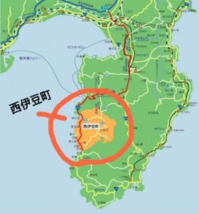 西伊豆・世羅町まつり2