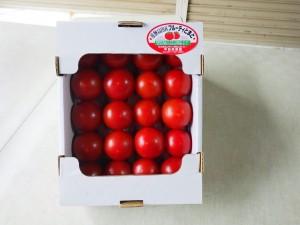 【フルーティトマト1箱20玉】 果樹園で栽培したデザート感覚のトマトです。真っ赤に完熟したものだけを収穫しました。