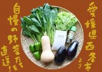 愛媛県西条の産直旬野菜たっぷり☆最上野菜のごちそうBOX☆限定20セット