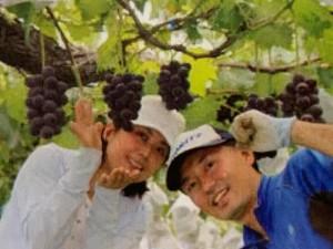 【長野県小布施町生産車ゼロスタートさん】他県から小布施町に新規就農され、ぶどうを作られている井田さんご夫妻。今年8年目になり、井田さん方のお人柄と美味しいぶどうにファンがどんどん増えています。