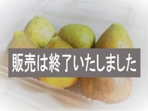 ☆旬!愛媛県西条市産有機いちじく 毎週10セット限定☆蓬莱柿(ほうらいし)4パック入(送料込)