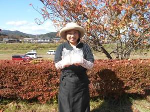 写真はさしみこんにゃく生産者の花島洋子さん。ご夫婦でトマト農家を営みながら、水のきれいな山間部の気候のを活かし、こだわりのさしみこんにゃくをひとつひとつ手作りしています。