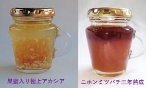 ①巣蜜入り極上アカシアと②希少なニホンミツバチ蜂蜜の3年熟成!限定セット