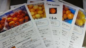 聞いたことも見たこともない柑橘があるのでどうしよう…というお客様には 「商品紹介POP」を各品種ごとに1枚同封いたします。簡単な商品紹介にはなりますが、お目通しの上楽しくお召し上がりください。