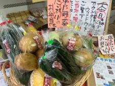 主菜が選べるいちばのご当地弁当 平戸焼き鯖 、鮮魚の海のハンバーグなど