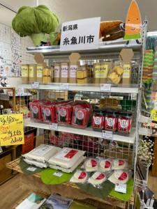 糸魚川まつり2021-4